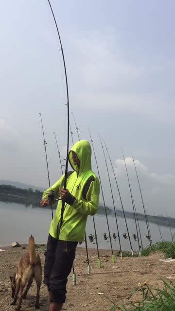 东江大河钓大鱼,海竿中鱼钓友连忙拉竿