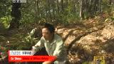 走遍中国:不朽岁月——苦战收国土