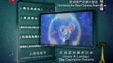 第17届上海电视节 最佳国产动画片金奖《猪猪侠》