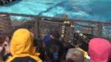 视频:张卫平篮球训练营 坠机前观众互动