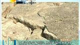 江西芦溪突发塌陷  房屋开裂村民转移