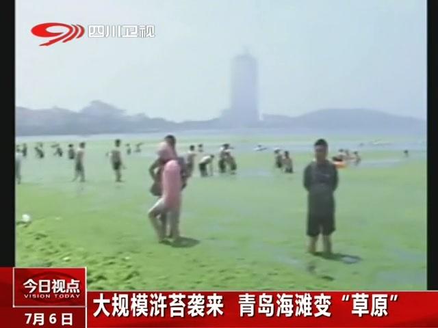 青岛海滩变草原截图