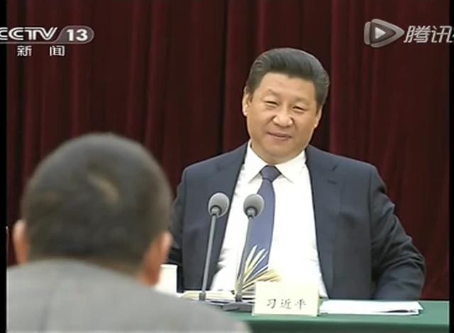 习近平看望参加政协会议的民革台盟台联委员截图