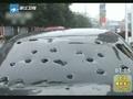 东莞遭雷雨大风及冰雹天气袭击致8人死136人伤