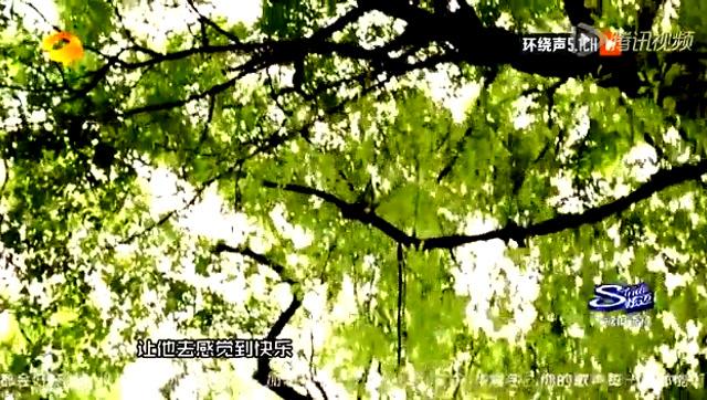 """尚雯婕华晨宇终合体 """"妖孽""""演唱《小星星》截图"""