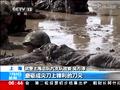 """武警上海总队首次举行海岛极限""""魔鬼""""训练"""