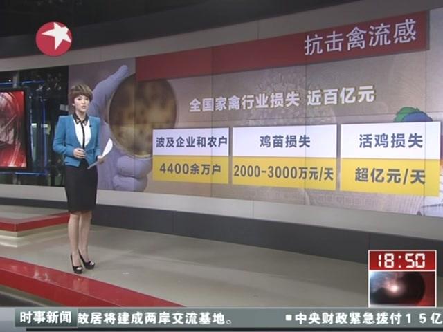 抗击禽流感 全国家禽行业损失近百亿元截图