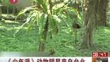 《少年派》动物明星来自台北