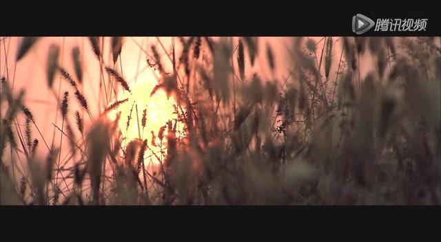 《乱世三义》情感片花截图