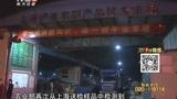 南京、上海:继白鸽后  鹌鹑、鸡也检出H7N9病毒
