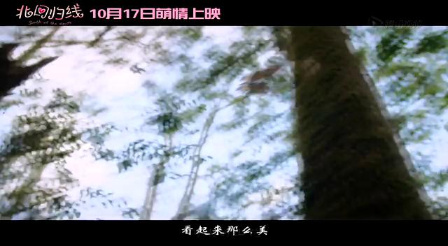 《北回归线》主题曲《九月鹰飞》李治廷黄龄截图