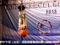2013亚太国际钢管舞锦标赛选手-李宏亮