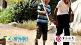 中国人的一天:坚强的小草