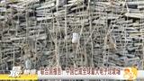 联合国报告:中国已成为全球最大电子垃圾场