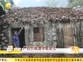 广西忻城遭罕见冰雹袭击 大如拳头砸烂瓦片