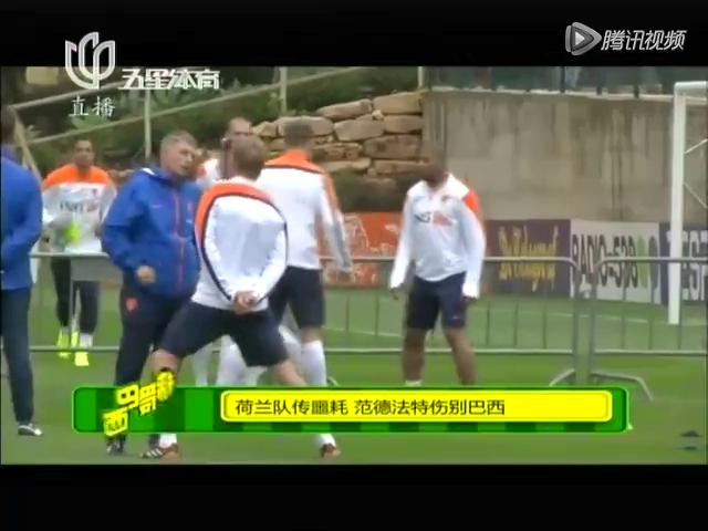 荷兰队传噩耗  范德法特伤别巴西截图