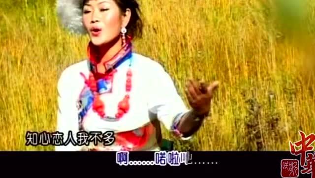 中华民歌 降央卓玛《马儿啊 你慢些走》