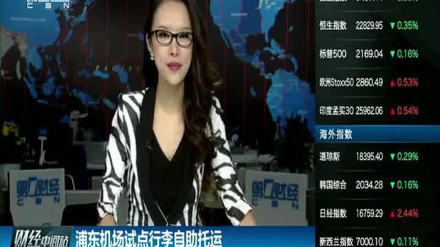 飞机降落浦东机场