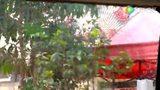 泼水节实拍缅甸果敢老街新百胜娱乐总汇