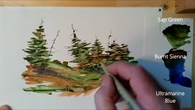 简单水彩风景画教程,美丽的松树