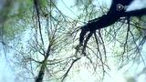《黑暗之光》王李丹妮豪放演绎一路向西