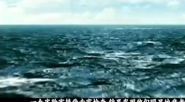 百慕大三角之谜:解开船只飞机神秘失踪!