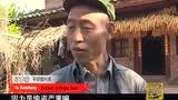 走遍中国:三七之乡 文山平坝