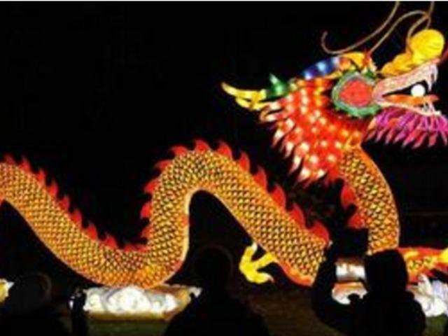 中国花灯点亮比利时安特卫普动物园
