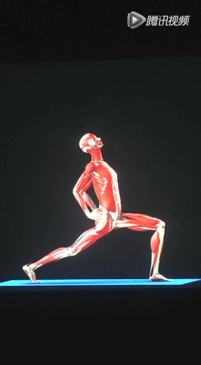 瑜伽教程—战士一式变体图片