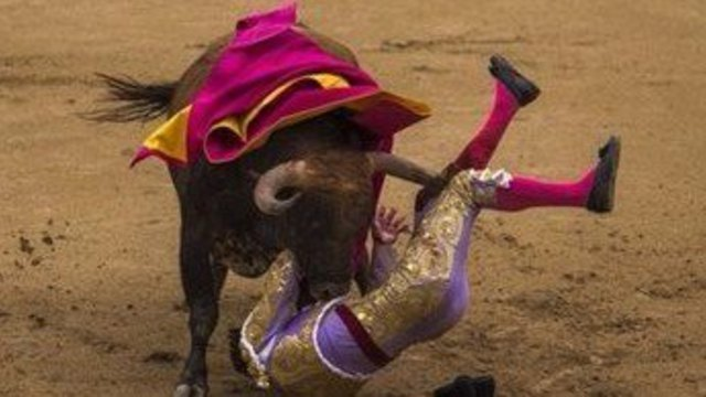 西班牙斗牛精彩镜头,再也不用去西班牙看斗牛了