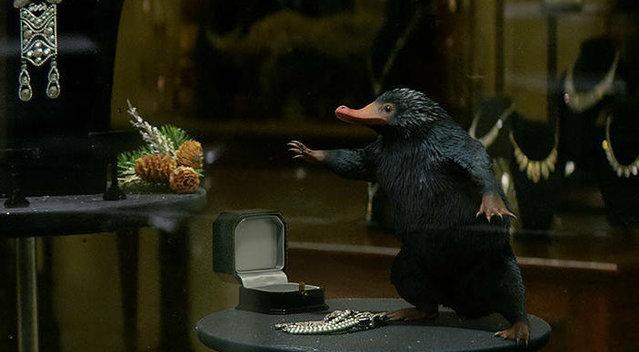 各地达人带你走进《神奇动物在哪里》片场