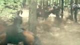 赵氏孤儿 片段:林中战斗