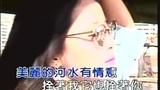邓丽君 - 水上人(Live)