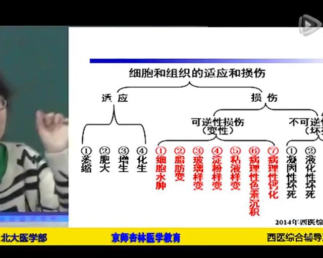 2014西医综合辅导冲刺
