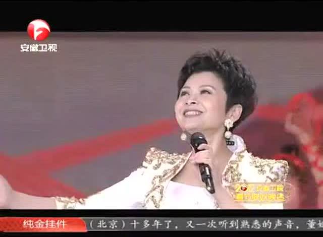 董文华《中国年》2012安徽春晚