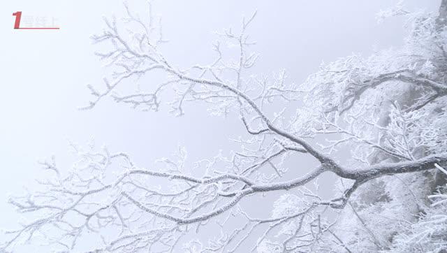 第22届中国吉林国际雾凇冰雪节雾凇冰雪摄影精品展图片
