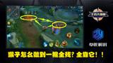 王者荣耀小药店:《王者大揭秘》一个决定能否猴子1V5的bug