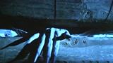 《深宫怨灵》致敬林正英混剪视频