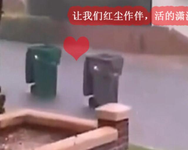 用垃圾桶敲开600岁故宫的城门