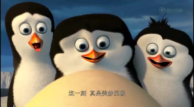 qq 音乐企鹅头像
