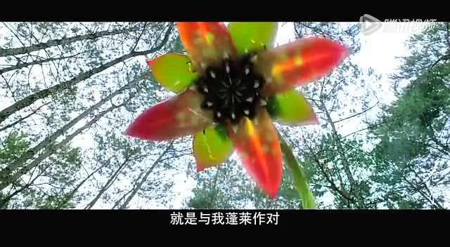 《花千骨》- 高清超长片花截图