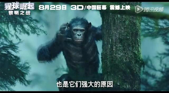 """《猩球崛起》独家预告 猿族领袖凯撒晋升""""新男神""""截图"""