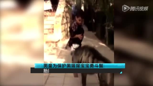 男童为保护黑猩猩宝宝勇斗鬣狗 抬腿狠踢截图
