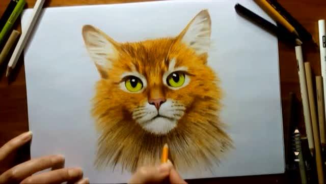 超萌猫咪素描,就是这么简单