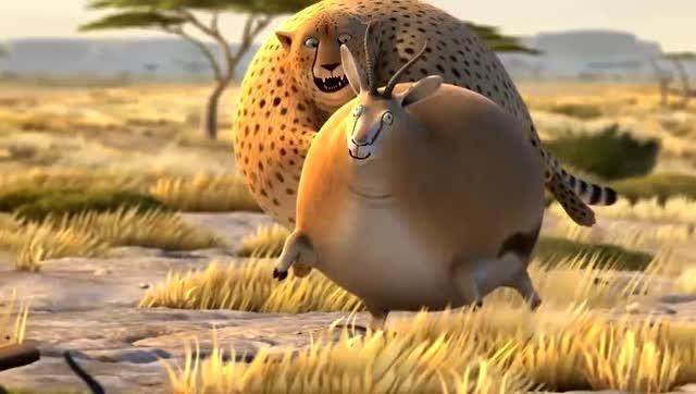 另类的动物世界,当胖豹子追逐胖羚羊的时候,那画面太美了