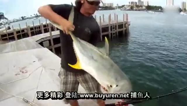 美女钓鱼太逗了这也没谁了-腾讯视频视频通话怎么才能图片