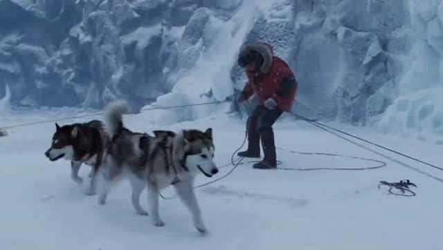 《南极大冒险》-狼性团队