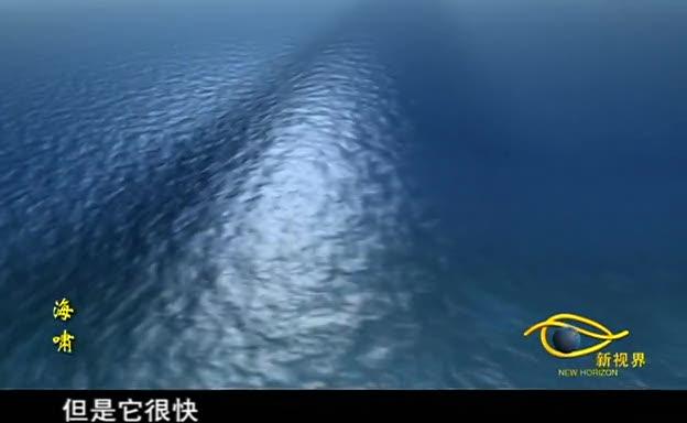 海啸夺走26万生命
