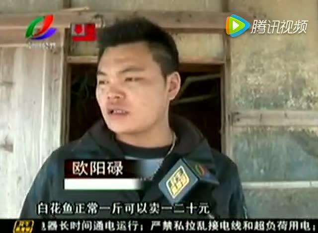 潮州饶平海山:养殖水产 大量死亡