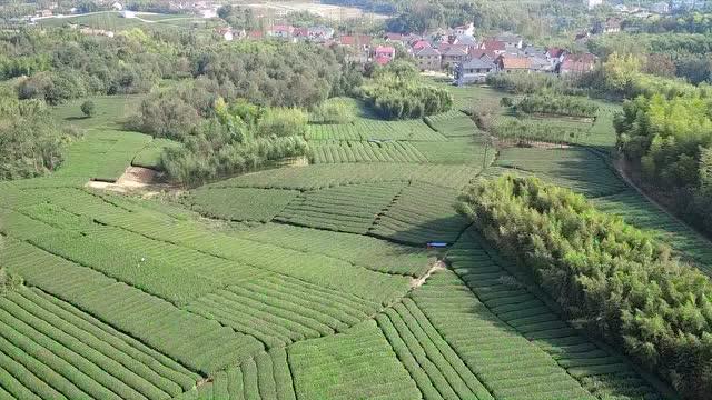 峰峰矿区旅游景点何村